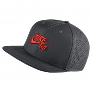 Boné Nike SB Performance Trucker