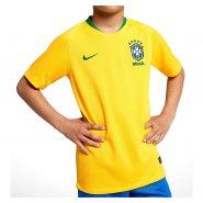 Camiseta Infantil Nike Brasil I 2018 19 893970-749 Amarelo 909c5bf445455
